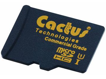 Cactus 240M MLC