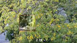 EKEN H9R скриншот качества картинки 2.7K - квадратики MJPEG артефакты